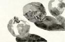 GENEVIEVE GOSSOT-Fruits_8