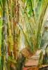 Bambous de GENEVIEVE GOSSOT_19