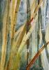 Bambous de GENEVIEVE GOSSOT_2