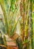 Bambous de GENEVIEVE GOSSOT_36